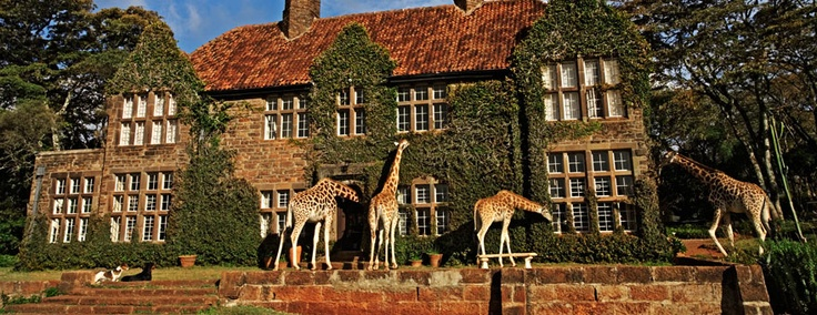 Giraffe Manor offers an unparalleled experience of the resident herd of giraffes http://www.thebigjourneycompany.com/kenya_safari_and_beach_stay_escorted_tour