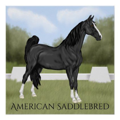 American Saddle-bred Horse Poster - horse animal horses riding freedom