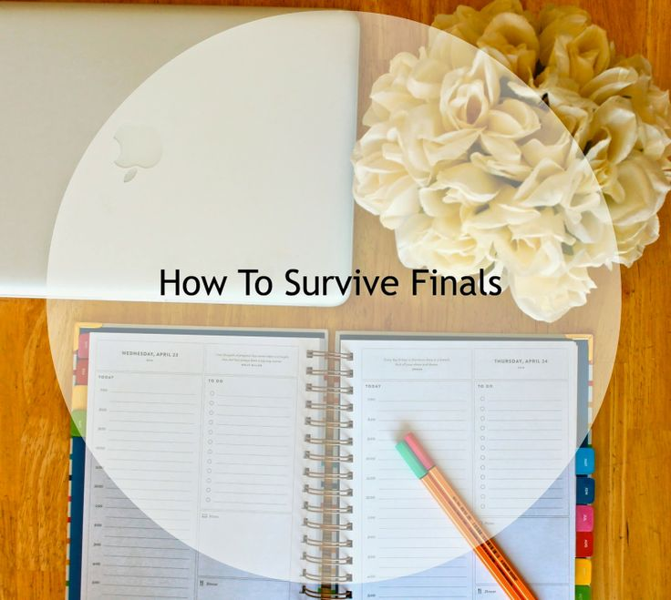 9 tips to survive dorm life the college survival handbook