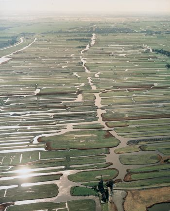 Aerial view of meadows in the Netherlands. All the water used to be regulated by the windmills.