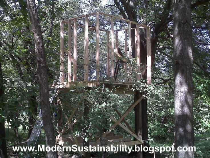 Modern Sustainability...old Fashioned Methods: How To Build A Tree House