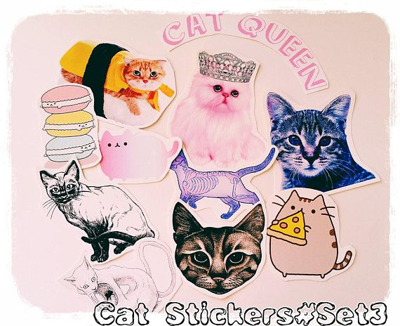 Check out this item in my Etsy shop https://www.etsy.com/listing/523038775/11-xlarge-cat-stickerskitten