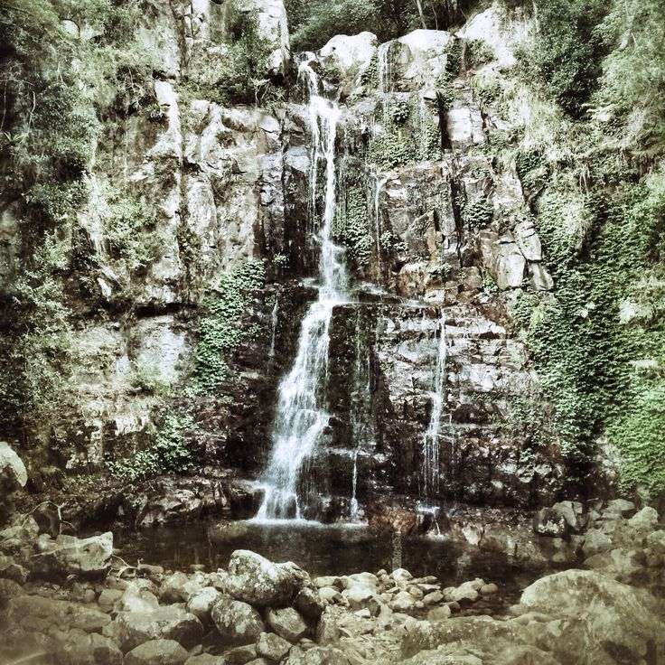 Minnamurra waterfall