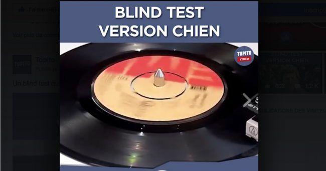 [VIDEO] Le 1er grand Blind Test version chien
