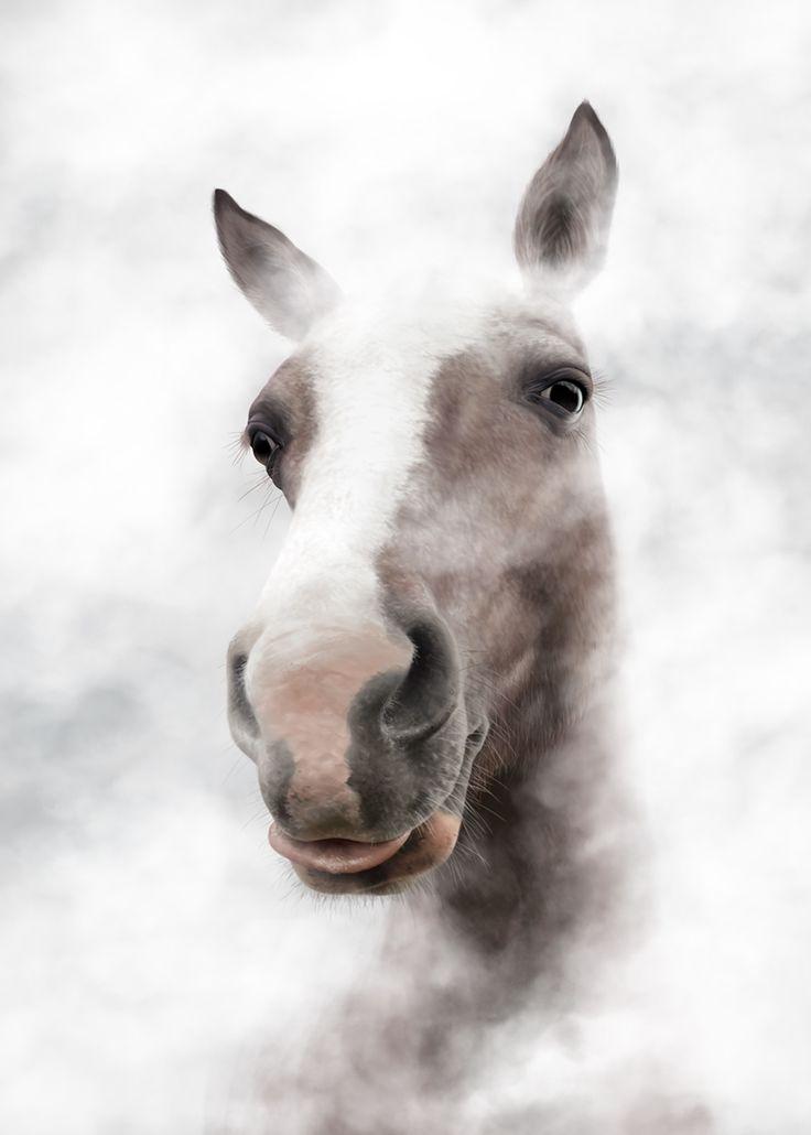 Horse Portrait - digital art (available as giclee print) / created by Magdalena Dymańska