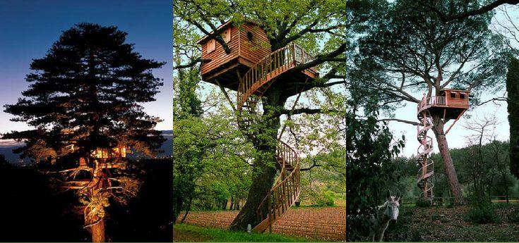 256 best images about casas del rbol on pinterest trees for Hotel con casas colgadas de los arboles