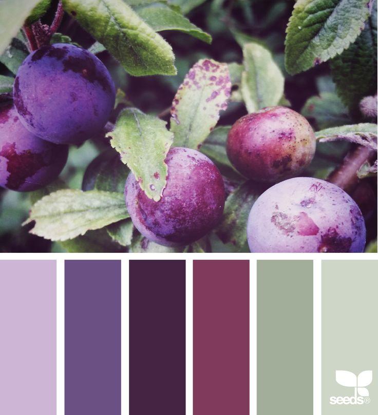 Fresh Palette via @designseeds