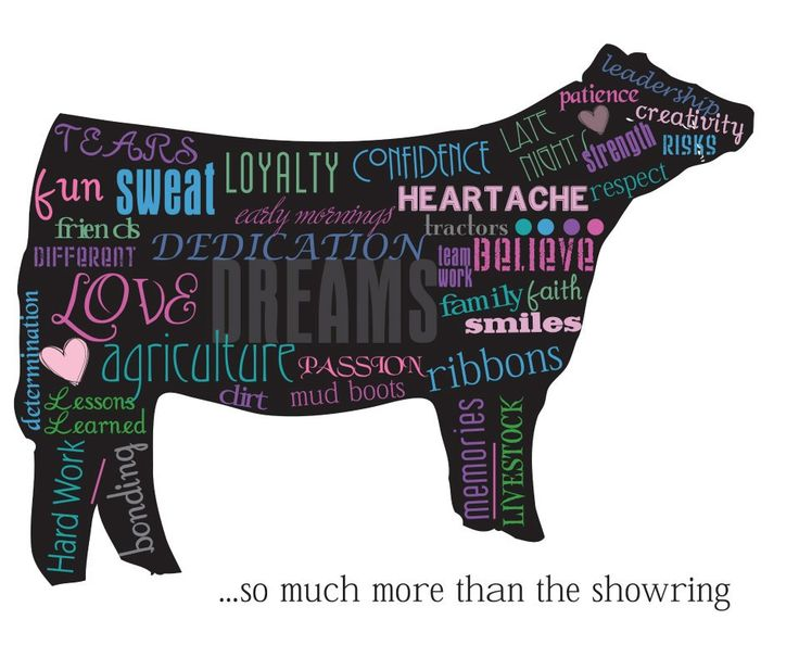 I'll be showing livestock till the day I die <3