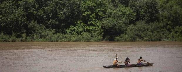 Droner er det nyeste våben i kampen for regnskovens overlevelse