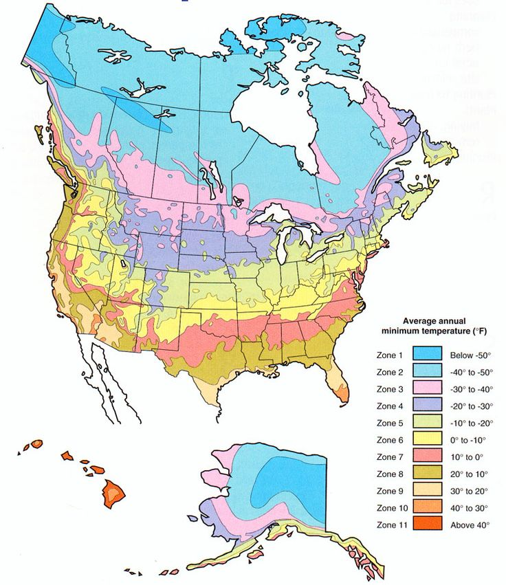 Plant Hardiness Zone Map For North America In 2020