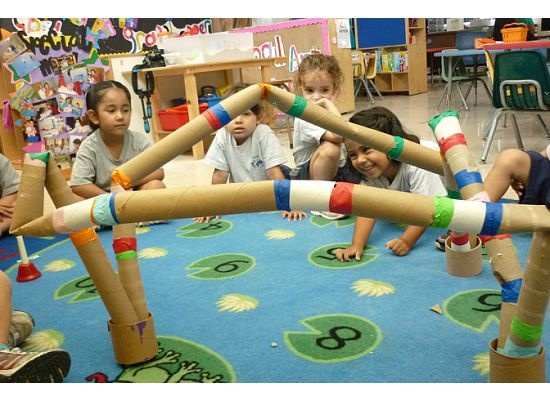 Study Unit about Ants (we create this ant tunnel using paper roll tubes)