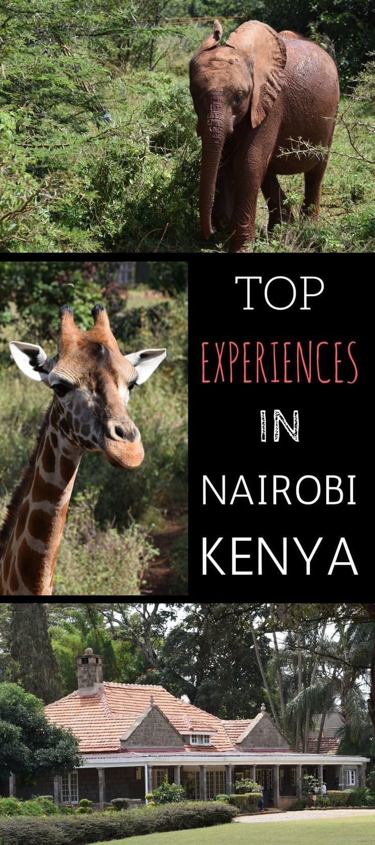 A guide to the top experiences in Nairobi Kenya. This post details all the main attractions and also provides a full 1 day itinerary from our trip to Nairobi.: