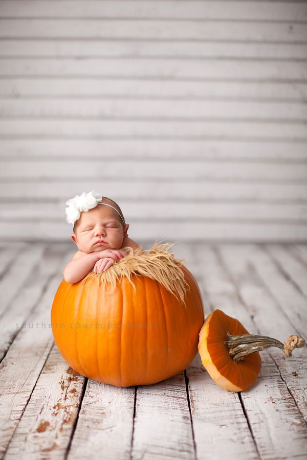 OH...MY...GOODNESS!!  I want a pumpkin like this!!