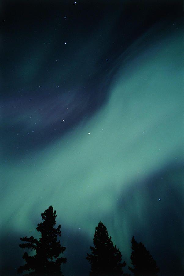 ✯ Northern Lights - Birds Hill Provincial Park, Manitoba