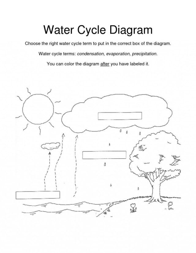 Water Cycle Coloring Page