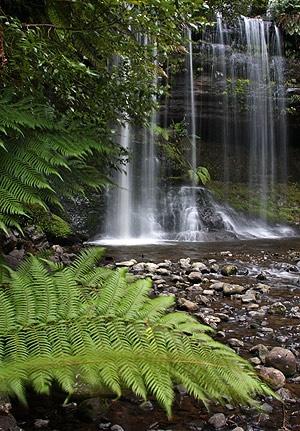 Russell Falls, Mount Field National Park, Tasmania. Photo: John Baker.