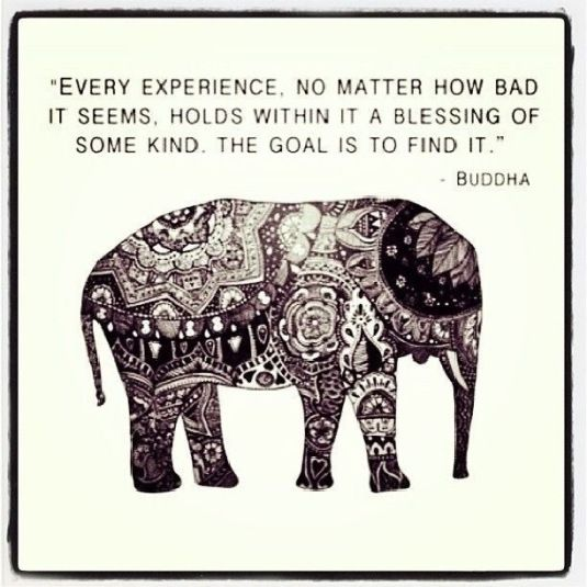 words of wisdom for your life by the Buddha