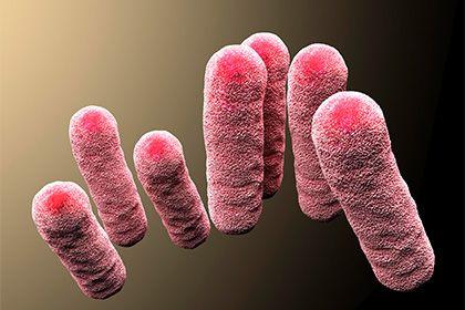 Раскрыт механизм эволюции смертельно опасных бактерий http://mnogomerie.ru/2017/02/28/raskryt-mehanizm-evolucii-smertelno-opasnyh-bakterii/  Ученые из Института Броуда и Гарвардского университета выявили мутации, которые способствуют появлению супербактерий — микроорганизмов, устойчивых к различным антибиотикам и вызывающих неизлечимые заболевания. Статья исследователей опубликована в журнале eLife. Изменения в ДНК могут привести к развитию резистентности к антибактериальным препаратам…