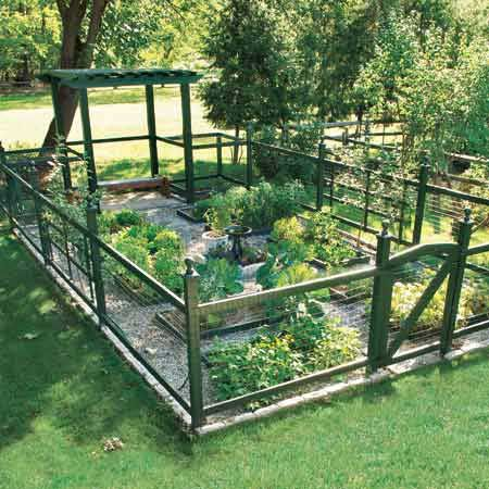 Fenced vegetable garden. I would put my chicken coop where the pergola is.