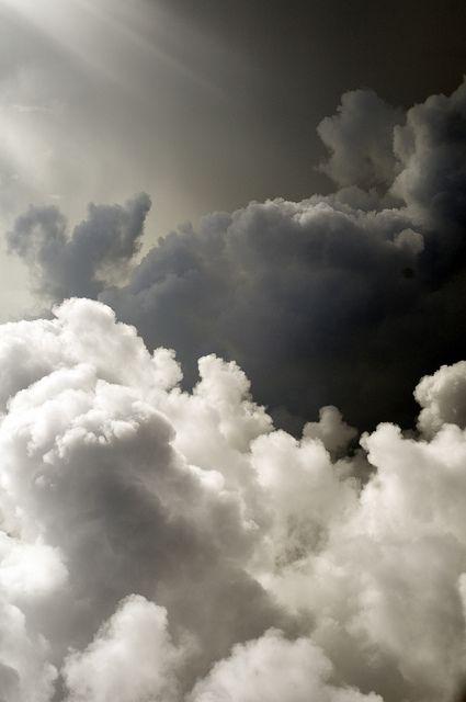 Climate Transition © Ahmed Shuau