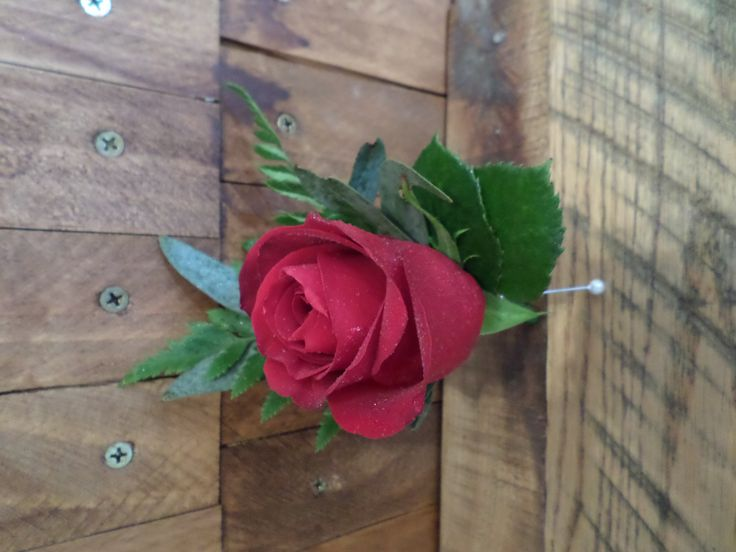 Red rose buttonhole made by Florist ilene, Hamilton, NZ