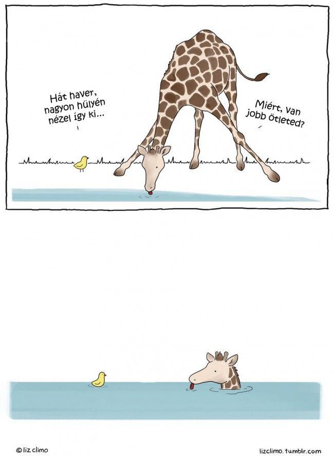 1060 Aranyos és jópofa rajzok az állatok titkos életéről a Simpson család egyik tehetséges illusztrátorától