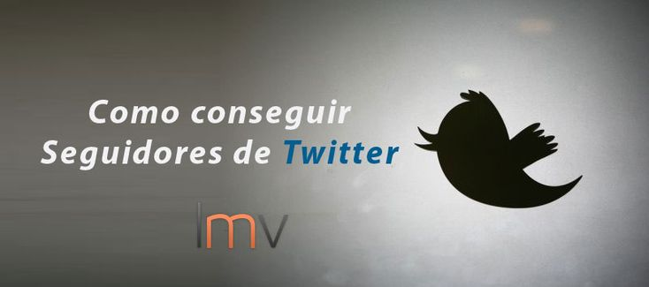conseguir-seguidores-de-twitter