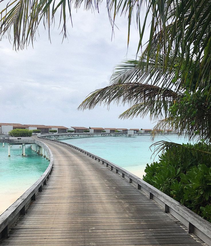 Blog Post: Maldives Visual Diary | Park Hyatt Maldives Hadahaa