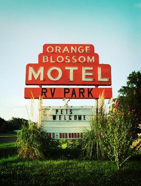 Orange Blossom Motel