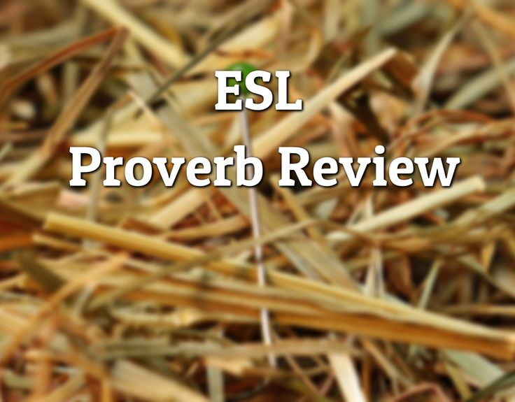 In 'Proverb Review' students practice speaking while discussing common English proverbs. Students discuss the proverbs meaning and compare them to proverbs in their own language.   #Proverbs #ESL #Translate #Compare #Teens #Adults #TEFL #EFL