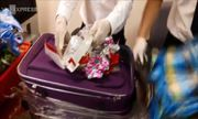 Gần 5 kg sừng tê giác Châu Phi quý hiếm, trị giá hơn 6 tỷ đồng, được cắt làm nhiều khúc giấu trong gói quà do đôi nam nữ mang về Việt Nam. Nguồn : http://video.vnexpress.net/tin-tuc/phap-luat/hai-quan-tan-son-nhat-tim-sung-te-giac-trong-goi-qua-3571191.html   http://cogiao.us/2017/04/16/hai-quan-tan-son-nhat-tim-sung-te-giac-trong-goi-qua/