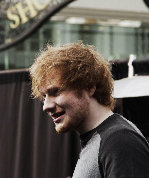 17 Best Ideas About Ginger Beard On Pinterest