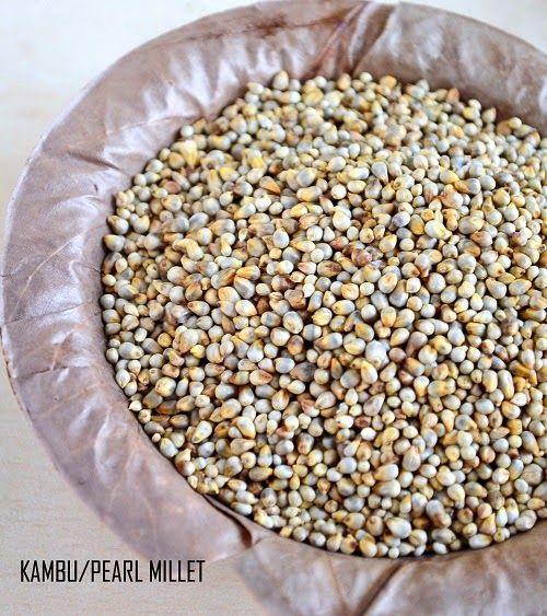 Pearl millet/Bajra/Kambu/Sajje/Sajjalu/Kambam
