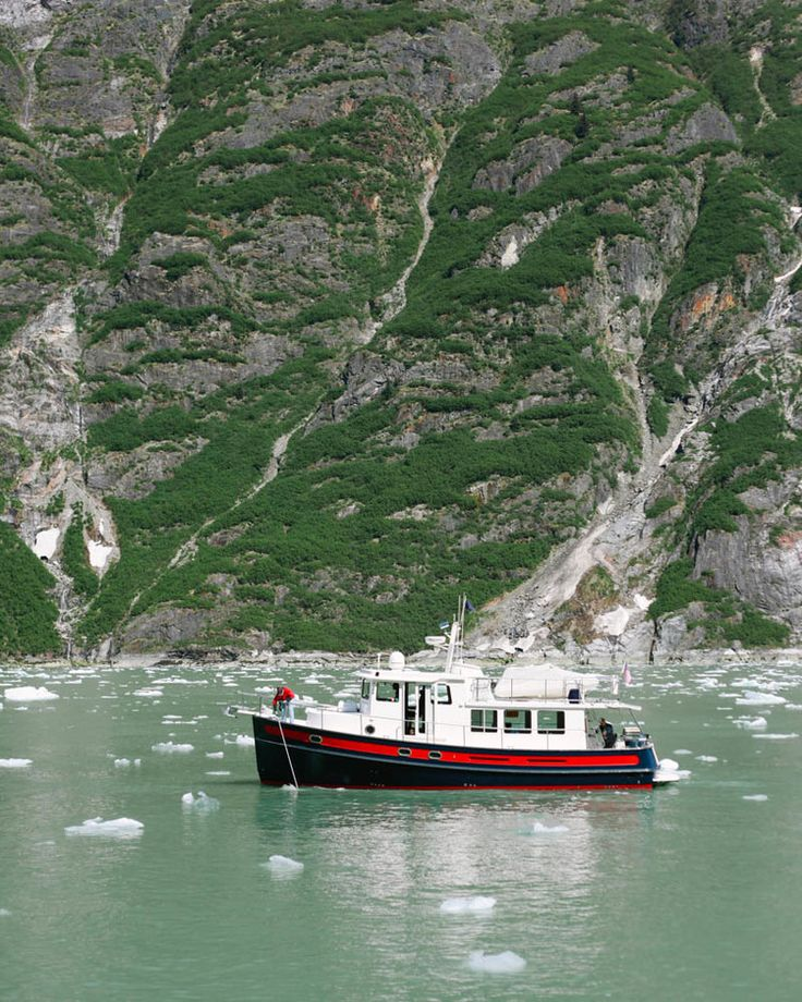Tracy Arm Fjord, Juneau, Alaska by Mallorie Owens