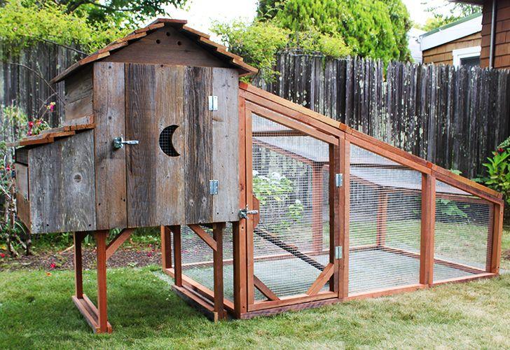 laughing chicken chicken coop, laughing chicken, chicken coop, portable chicken coops, reclaimed wood, recycled chicken coop, redwood chicken coop
