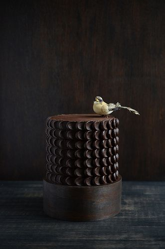 Chocolate cake with bird