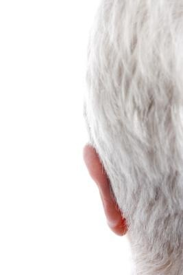 Symptoms of a Magnesium Deficiency & Gray Hair: Grey Hair, Gray Hair, Colors Grey, Hair Black, Natural Colors, Black Hair, Colors Gray, Hair Dye, Commercial Hair