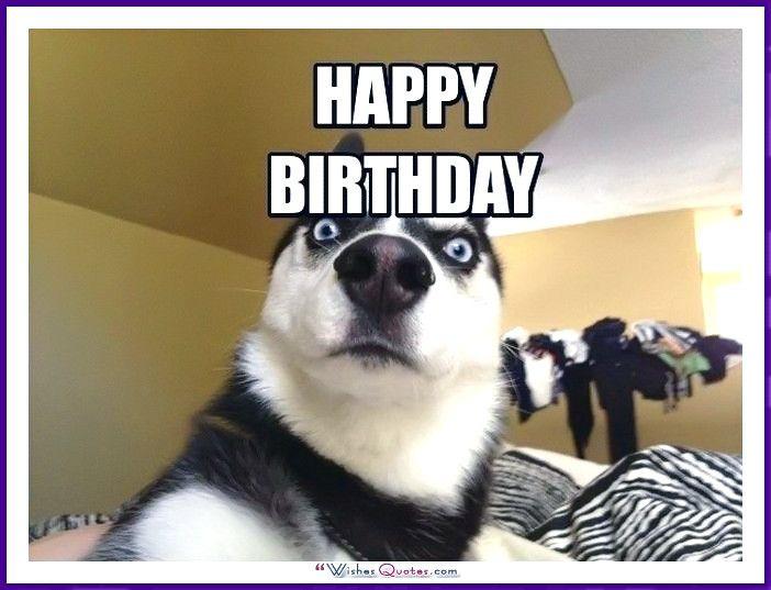 Happy Birthday Meme Sister Karen