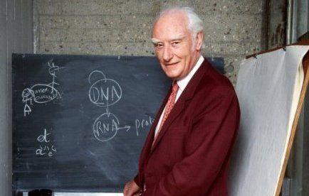 Une lettre du Britannique Francis Crick, dans laquelle ce prix Nobel de physiologie ou médecine 1962 racontait à son fils de 12 ans sa découverte de la structure de l'ADN, a été adjugée mercredi 6 millions de dollars à New York, trois fois son estimation initiale.           Copyright : Lepoint