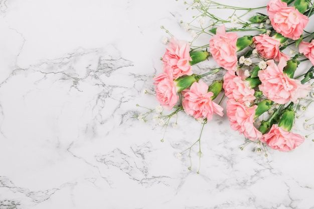 Download Baby S Breath Flowers And Carnations Bouquet On The Corner Of The Marble Textured Backdrop For Free Carnation Bouquet Babys Breath Flowers Carnations