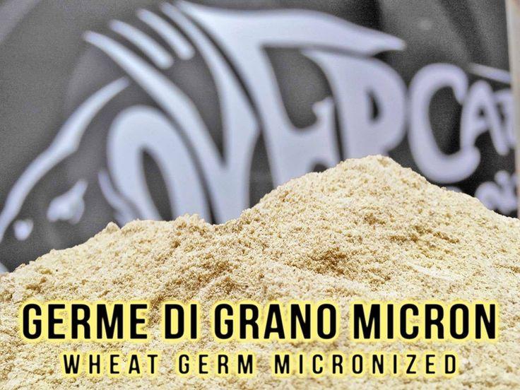"""Germe di grano micronizzato, ingrediente ricchissimo di amminoacidi, contiene grandi quantità di VITAMINA """"E"""", oligoelementi e sali minerali. Ingrediente onnipresente nelle ricette della linea Ready Made Over Carp, risulta essere altamente digeribile. https://www.pagliarinifishing.it/Product_16527_GERME_DI_GRANO_MICRONIZZATO___1_Kg #carpfishing"""