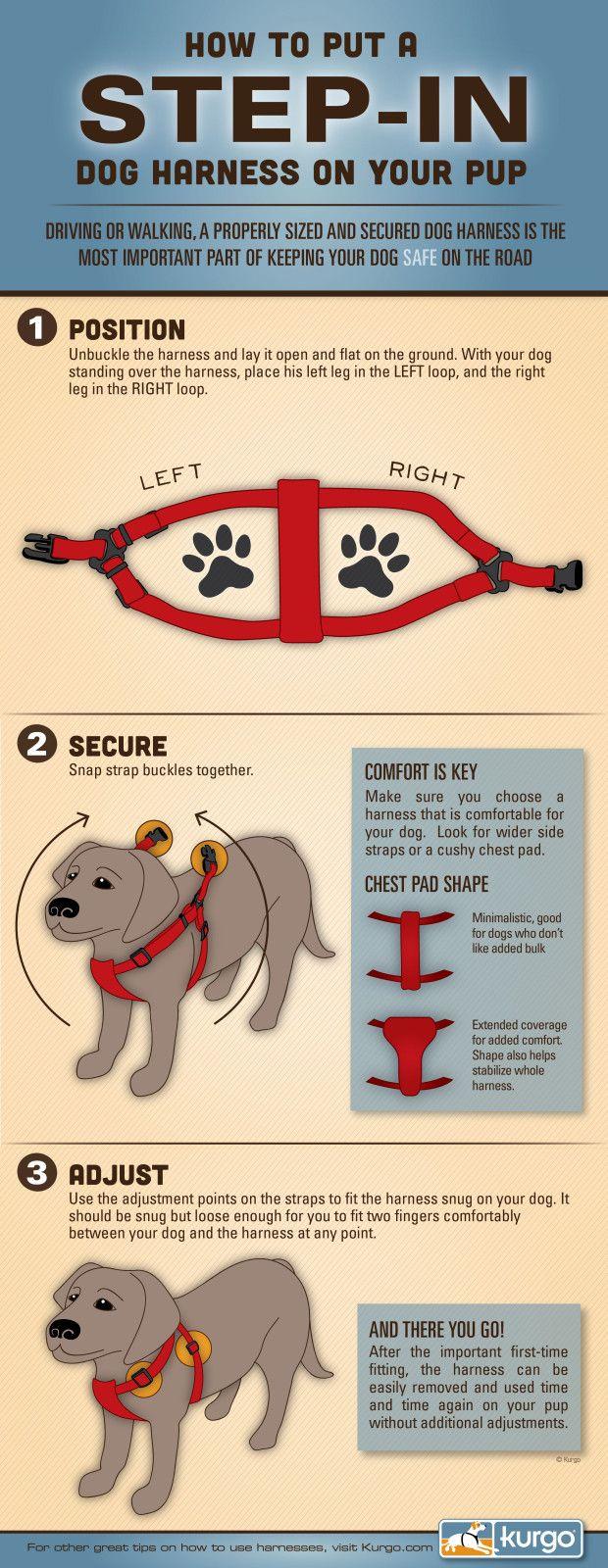 How to Put on a Step-In Dog Harnesshttp://www.kurgoblog.com/put-step-dog-harness/