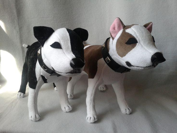 Amerikai staffordshire terrier