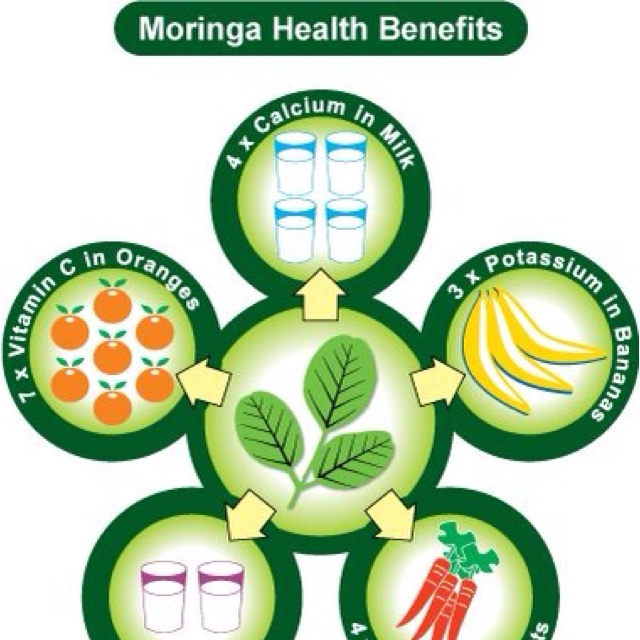 Weight Loss Moringa Tree: Drink Life In On Pinterest