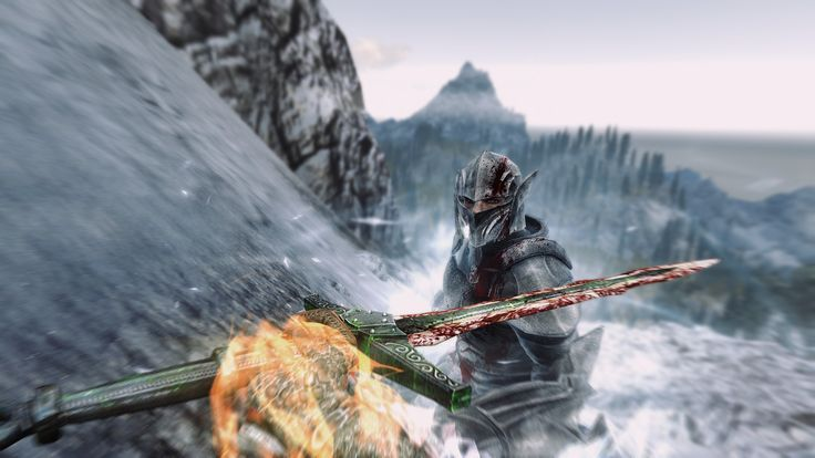 Managed to capture this intense moment while fighting the Ebony Warrior for the first time #games #Skyrim #elderscrolls #BE3 #gaming #videogames #Concours #NGC