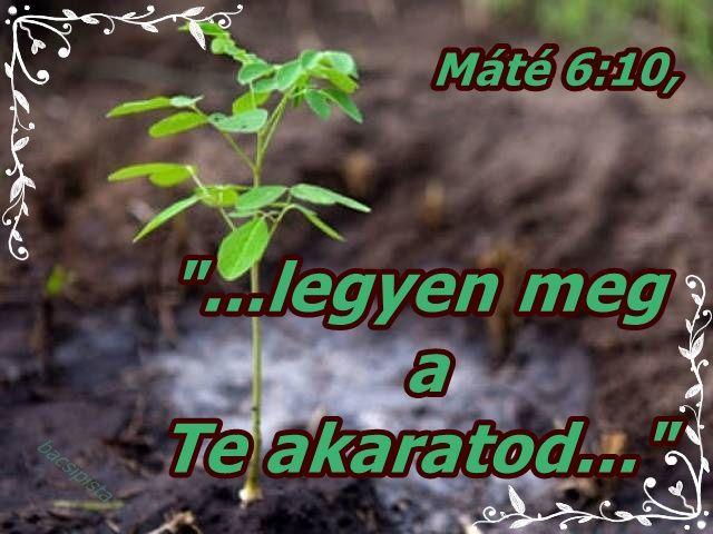 """""""...legyen meg a Te akaratod..."""" Máté 6:10,"""
