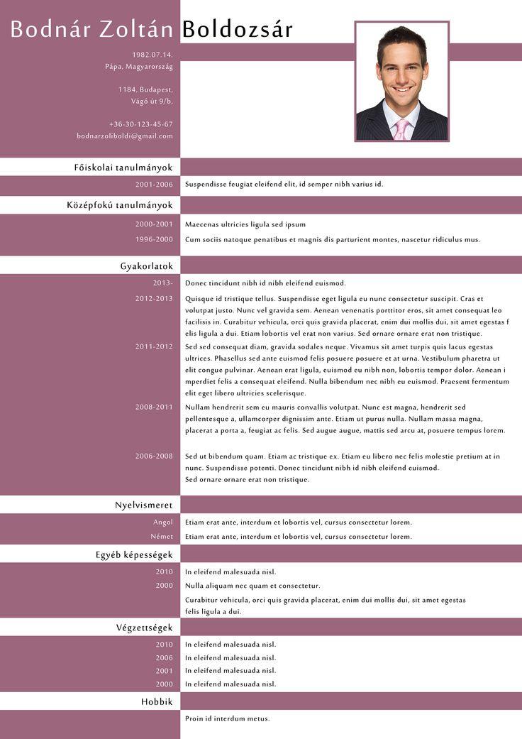P2 Design CV