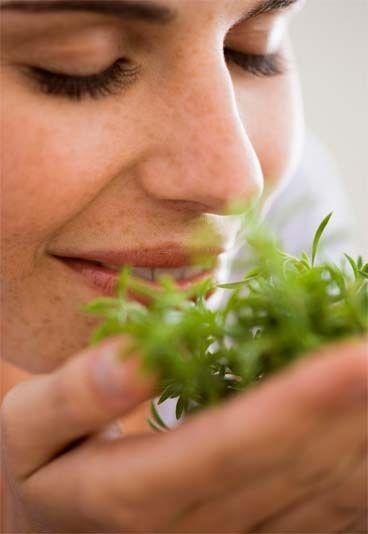 Remede contre la fatigue : les remèdes naturels pour lutter contre la fatigue