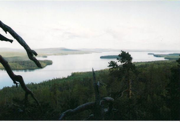 Pellon matkakuvat - Miekojärvi | Napsu