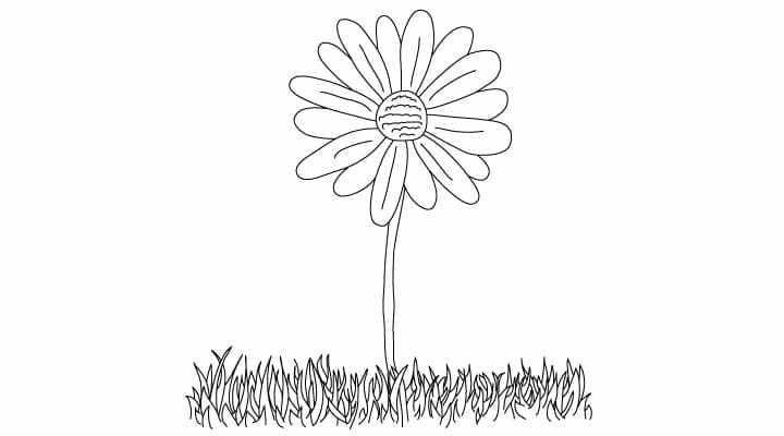 17 meilleures id es propos de dessin marguerite sur - Comment dessiner un tournesol ...